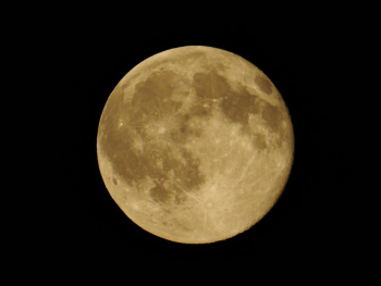 FULL Moon - How to keep your Balance with a Healthy Stomach